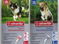 La leishmaniosis canina su prevenci n s ntomas - Pipeta advantix despues bano ...
